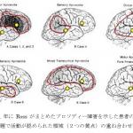 非言語コミュニケーションの 脳内機能メカニズム